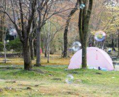 京都のオートキャンプ場!バンガロー アスレチック 川遊び等 初心者向けキャンプ場