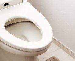 災害時の断水や停電で トイレをリモコンで流せない場合の対処 対策法!