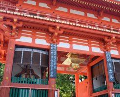 八坂神社のをけら(おけら)詣りとは?灯篭の火に使われるオケラとはどんな植物?!