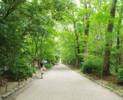 京都下鴨神社の御手洗祭!今年の日程と土用の丑の日はいつ?