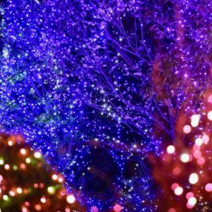 2019年大阪駅 梅田周辺のクリスマスイルミネーション情報