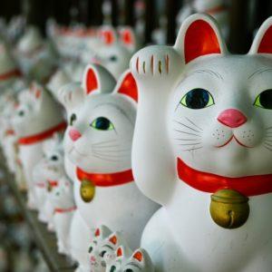 招き猫の由来と開運効果や飾り方!上げる手や色で運気はどう変わる?